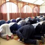 Polen er ifølge en ny undersøgelse i ti europæiske lande det land, hvor flest går ind for et stop for indvandring fra muslimske lande. Her polske muslimer i en moske i Warszawa.