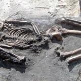 Et 3.000 år gammelt skelet som er blevet kaldt Ngwarasea (Oldingen) blev gravet ud af arkæologer på Fiji i 2005. Sammen med 15 andre skeletter fra samme tidsperiode har den gamle mands skelet givet grundlag for at afdække, hvor Lapita-folket kom fra, der senere bredte sig til hele Polynesien. AFP PHOTO/University of the South Pacific