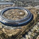 Formet som en UFO og med et areal som 43 fodboldbaner: Apples nye hovedkvarter er stadig en byggeplads, men konturerne af en futuristisk bygning tegner sig.