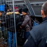 Der er ingen garanti for, at flygtninge og migranter kan beholde deres værdier, hvis de søger ophold i Tyskland. Foto: Christian Bruna/EPA