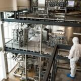 Chr. Hansen er verdens største producent af bakterier, kulturer og enzymer til mejerprodukter, og andre fødevarer. De fleste bakterier fremstilles på selskabets fabrik i Avedøre.