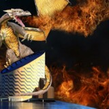 Dragerne erobrer Tycho Brahe Planetarium i efterårsferien. Foto: PR