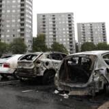 Politiet kan på nuværende tidspunkt ikke koble bilafbrændingerne til lokale bander, og udgangspunktet for efterforskningen er derfor, at der er tale om »et antal individer«, som besluttede sig for at sætte ild til biler i deres lokalområde, lyder det i en pressemeddelelse.