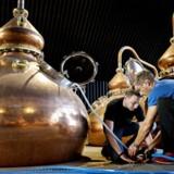 Stauning Whiskys medarbejdere er ved at lægge sidste hånd på destilleriet inden åbningen den 25. august. Her tester to ingeniører, hvor lang tid en gasbrænder er om at opvarme 1000 liter vand.