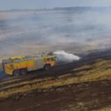 Flyvevåbnets to crashtendere assisterede ved slukningen af naturbranden. De har blandt andet de fordele, at de er terrængående, og at vandslangerne kan betjenes inde fra førerhuset.