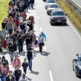 I fjerde kvartal af 2015 blev der registreret 11.539 asylansøgere i Danmark. Antallet er faldet til 806 ansøgere i første kvartal af 2018. På billedet ses en del af de mange flygtninge, der i september 2015 vandrede på Sydmotorvejen ved Rødby med næsen mod Sverige.