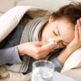 Antal indlagte med influenza er det højeste de seneste fem sæsoner.