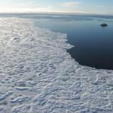 ARKIVFOTO 2015 af Polarhavet