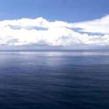 Dybt nede under Stillehavets overflader, aller dybest nede i Marianergraven hvor forholdende er ekstreme, trives bakterier til forskernes store overraskelse.