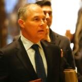 Oklahomas justitsminister Scott Pruitt bliver USA nye »miljøminister«