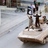 (Arkivbillede Raqqa)