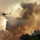 Tirsdag var 20.000 mennesker evakueret og mindst 11 omkommet i de mest katastrofale brande i delstatens historie. De lokale kalder vinden, der bærer flammerne frem, 'Diablo' eller 'Djævlen'. En helikopter dumper vand i Orange, Californien.