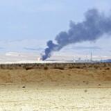 Arkivfoto: Palmyra.