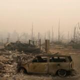 Nedbrændt boligområde i Santa Rosa, Californien.