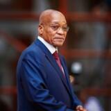 »Zuma siger, at han ikke skal nogen steder og ikke har gjort noget forkert,« siger ANC-kilde.