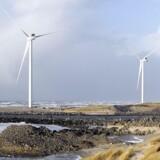 Mens fortællingen om Danmark som et grønt land lever i bedste velgående, mangler der politisk vilje til for alvor at handle, lyder det fra en række forskere.