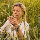 Efter ti års indsats har forskere nu genom-sekventeret hele byg-planten. Det bliver nyttig viden for Carlsberg, forklarer bryggeriets forskningschef Birgitte Skadhauge.