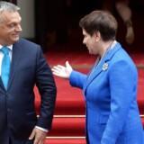 Den polske premierminister, Beata Szydlo (th.), og den ungarske, Victor Orban (tv.). EU-Kommissionen har indledt en retssag imod Tjekkiet, Ungarn og Polen, fordi de ikke vil tage imod EUs kvoteflygtninge.