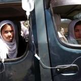Det går den forkerte vej for undervisningen af piger i Afghanistanm viser en rapport fra Human Rights Watch.