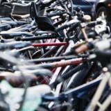 Arkivfoto: En bande på otte rumænske mænd er blevet anholdt og sigtet for cykeltyverier i Aalborg. De blev pågrebet med 15 cykler på en trailer, og politiet undersøger, om de har stjålet flere.