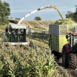 Et forslag fra foreningen Landbrug og Fødevarer har skabt røre i debatten i disse dage.