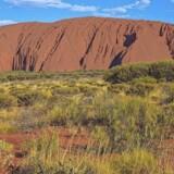 Den enorme Ayers Rock, eller Uluru, i Australiens Northern Territory. Foto: Wikimedia Commons