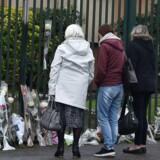 Blomster lagt foran Gendarmerie Nationale i Carcassonne 24. marts 2018 til minde for de dræbte under angrebet i Frankrig 23. marts 2018. I alt fire blev dræbt under angrebet. / AFP PHOTO / PASCAL PAVANI