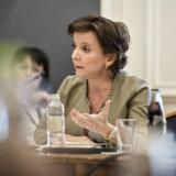 »Jeg er blevet oplyst om, at der ikke på noget tidspunkt har været tale om, at embedsmænd er blevet sat til at påvirke eller modarbejde flertallet i Folketinget,« siger Karen Ellemann på et samråd om sagen onsdag.