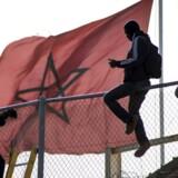 Afrikanske migranter eller flygtninge forsøger jævnligt at forcere det høje hegn, som Spanien har rejst rundt om sin lille enklave Melilla i det nordlige Marokko. Jesus Blasco de Avellaneda TPX IMAGES OF THE DAY