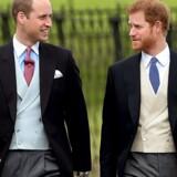 Prins William er beæret over, at han skal støtte prins Harry, når lillebroren skal giftes med Meghan Markle.EPA/STR UK AND IRELAND OUT SHUTTERSTOCK OUT