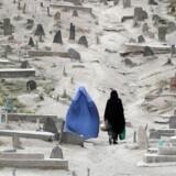 Antallet af selvmord og drab i Mellemøsten er fordoblet på 25 år. TOPSHOTS / AFP PHOTO / Punit PARANJPE