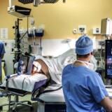 Pårørende til patienter, der erklæres hjernedøde, accepterer i flere og flere tilfælde, at deres familiemedlemmers organer må bruges til organdonation. Dét har bidraget til, at antallet af afdøde organdonorer sidste år nåede op på 89 – det højeste antal nogensinde.