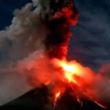 Udbrud i den filippinske vulkan Mayon 25. januar i år.