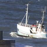 »Da Folketinget i 2002 indførte omsættelige kvoter, var formålet at reducere antallet af fartøjer, så de resterende kunne fiske rentabelt.« Arkivfoto