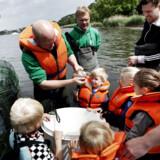 Øresundsmiljøskolen indbyder i denne weekend københavnere til at fiske fisk op af Øresund og havnen og dermed hjælpe forskere med at samle arter ind til det kommende fiskeatlas. Til venstre fiskeforsker Henrik Carl. I midten med torsken er det biolog Søren Breinholt, der leder Øresundsmiljøskolen.
