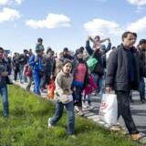 Mandag invaderede knap 200 flygtninge Sydmotorvejen ved Rødby og begyndte den lange vandring mod Sverige. Flygtningene var forinden hevet af toget fra Tyskland på Rødby Havn Station.