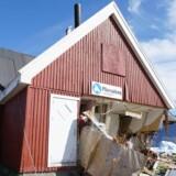 Tsunamien i Grønland giver vigtig viden omkring tsunamier udløst af jordskred. Det siger dr. Hermann Fritz fra Georgi Tech, der har besigtiget områder i Grønland, hvor tsunamien ramte. Free/Dr. Herman Fritz/georgia Tech