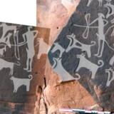 Jægere fra oldtidens Saudi-Arabien med hunde i snor bundet til livet. Illustration fra artiklen »Pre-Neolithic evidence for dog-assisted hunting strategies in Arabia« offentliggjort i Journal of Anthropological Archaeology.