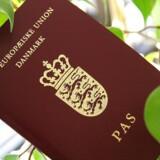 4016 nye danske statsborgere har indtil nu været usynlige i den samlede statistik over, hvor mange personer der har fået tildelt statsborgerskab og et dansk pas fra 2007 til 2015.