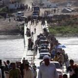 Fordrevne yazidier, der var flygtet fra Islamisk Stat i 2014, vender tilbage til Irak fra Syrien ved en grænseovergang i Dohuk-provinsen. Reuters/Ari Jalal/arkiv