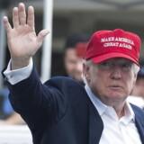 Donald Trump har nu siddet på præsidentposten i et halvt år.