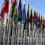 Har verdenssamfundet viljen, kan det sikre rent vand til alle, mener ekspert og FN's Børnefond.