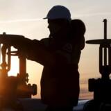 »Muligheden for at lette produktionsbegrænsningerne i Opec fortsætter med at være reflekteret i olieprisens nedadgående bevægelse,« siger Lukman Otunuga, analytiker ved børsmægleren FXTM, til Reuters.