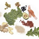 ARKIVFOTO 2016 af superfood: oliven, valnødder, blåbær, laks, avocado, goji bær, oliven, mynte, grønkål, ingefær, quinoa