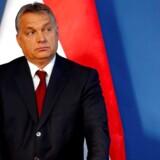 Viktor Orbán skal betale 350.000 forint, hvilket svarer til 8340 danske kroner, som straf for videoen, da den blev optaget uden accept fra børnenes forældre.