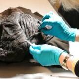 Skrydstrupkvinden får undersøgt sin hårpragt. Arkivfoto: scanpix