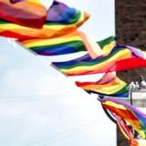 Hendes plan støtter også LBGTI-personer. Det omfatter bøsser, lesbiske, biseksuelle, trans- og intetkønnede personer. Mange af dem møder stadig fordomme og diskrimination, mener ligestillingsministeren. Foto: Mads Claus Rasmussen