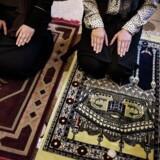 Arkivfoto. Noor Alhoda og Hager Al Fortoussi studerer medicin på Panum institut/Københavns universitet. Noor og Hager bruger andagtsrummet til at bede, når de har pause.