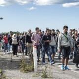 Antallet af personer, der søger asyl i Danmark, er faldet fra 21.316 personer i 2015 til 6.072. Det viser tal fra Udlændinge- og Integrationsministeriet på baggrund af politiets POLSAS-system. Tallet dækker det foreløbige bruttoansøgertal og forventes at lande på 6.300 ansøgere. På billedet ses flygtninge og migranter, der vandrede på motorvejen i efteråret 2015.
