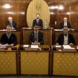 Kønsfordelingen i landets byråd er generelt skæv, men i visse udvalg er kvinder sågar en decideret sjældenhed.